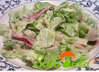 salatis fotlebi lorit