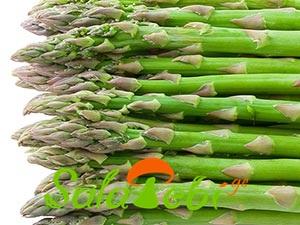 Asparagus_satacuri_3549998044
