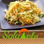 boliokis-da-nigvzis-salata