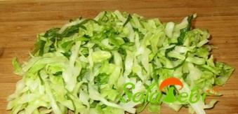 kpmbpstps-salata