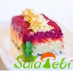 shuba-salata